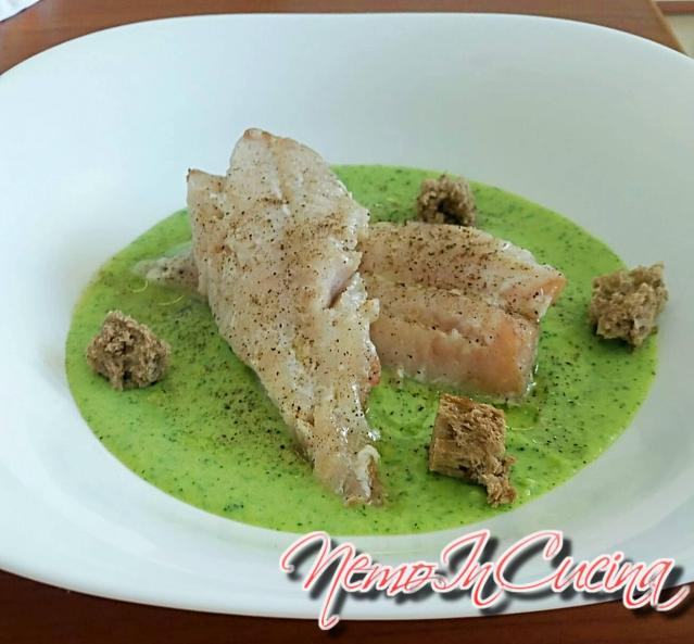 Filetto di Sogliola su vellutata di Zucchina